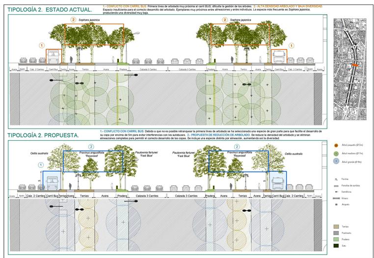 Plan de Regeneración del arbolado del Paseo de la Castellana